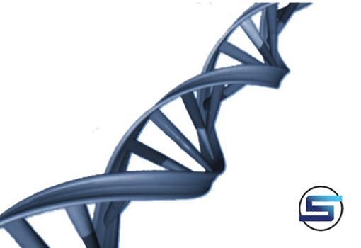 RNA-1