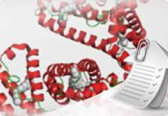 Proteins-and-small-samples