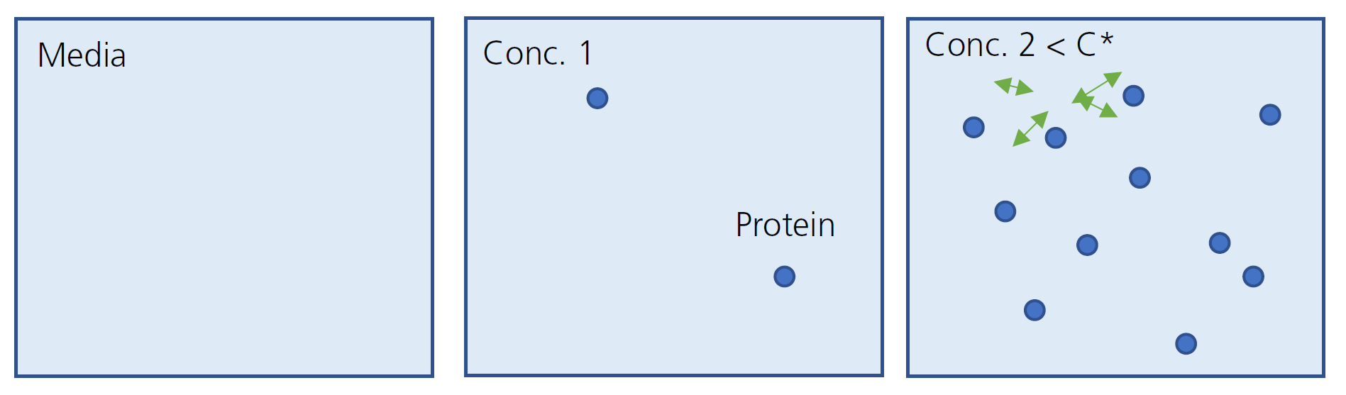 Protein Population in Accordance of Concentration