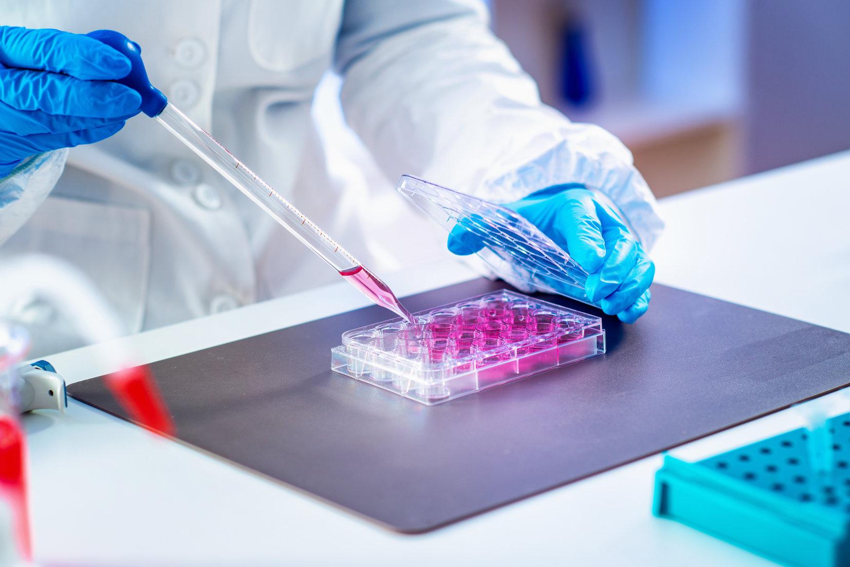 Viscosity of Fetal Bovine Serum and Media Formulations